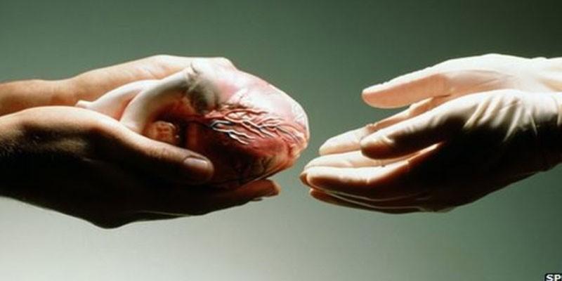 Donazione degli organi, un gesto nobile che può salvare una vita